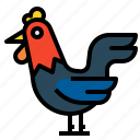 animal, animals, bird, farm, hen, kingdom icon