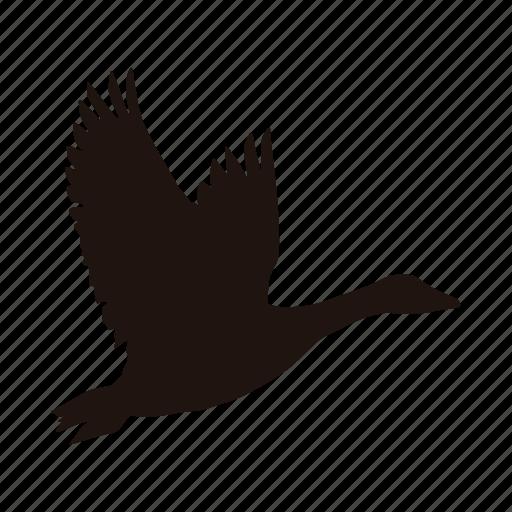 bird flying goose zoo icon