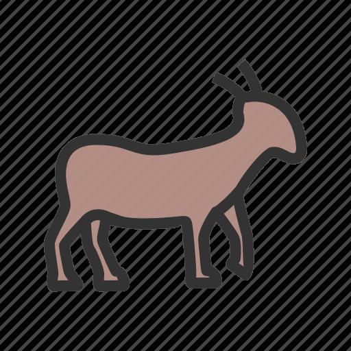animal, farm, farming, goat, goats, outdoor, young icon