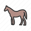 farm, grass, grazing, horse, horses, pasture icon