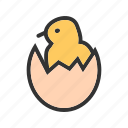 bird, chicken, egg, eggs, hatch, hatched, shell icon