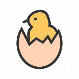 bird, chicken, egg, eggs, hatch, hatched, shell icon