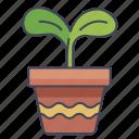 garden, leaffarm, plant, pot
