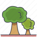agriculture, farm, forest, garden, tree, wood