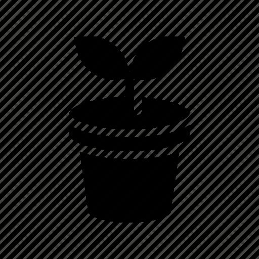 botanical, plant, pot icon