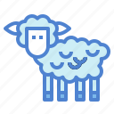 animals, mammal, sheep, wildlife icon