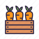 agriculture, carrots, farm, farming, food, gardening icon
