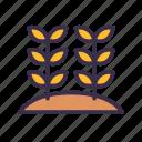 agriculture, farm, farming, gardening, wheat icon
