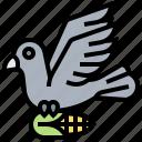 crop, bird, farm, pest, crow icon