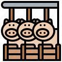 farm, herd, livestock, pigs, ranch icon