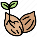 germination, growth, plant, seedling, seeds icon