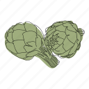 artichoke, color, food, hand drawn, recipe, restaurant, vegetable icon