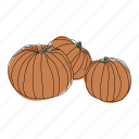 color, fall, food, halloween, hand drawn, pumpkins, vegetable icon