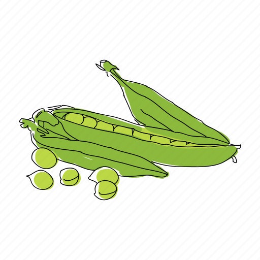color, food, hand drawn, pea pods, peas, restaurant, vegetable icon