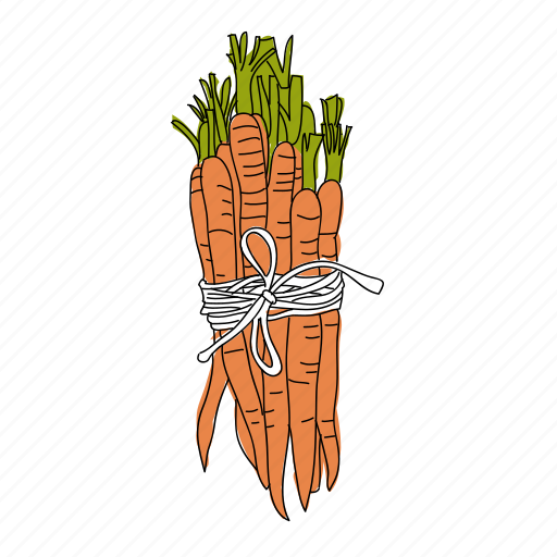 carrots, color, farm, food, hand drawn, nutrition, vegetable icon