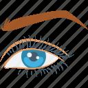 eye, eye beauty, eyebrow, face, woman eye