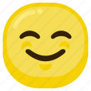 emoticon, emoticons, expression, good, smile, smiley icon