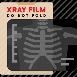 bones, chest, medical, xray icon
