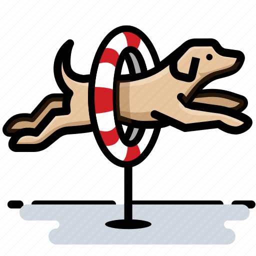 agility, dog, jump, labrador, leap icon