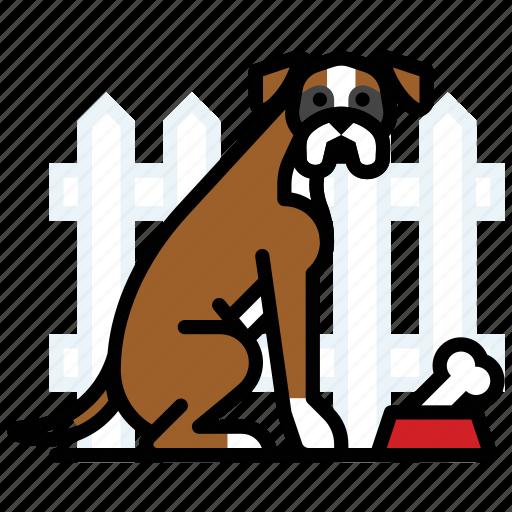 bone, boxer, canine, dog, food bowl, pet, uncropped icon