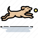 ball, dog, fetch, pet icon