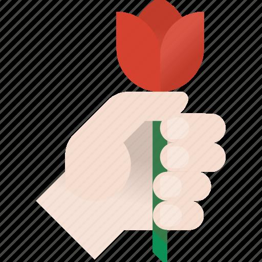 flower, love, tulip icon