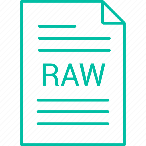 extension, file, raw icon
