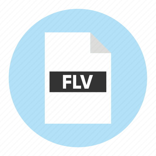 Document, extension, file, filetype, flv, format, type icon - Download on Iconfinder