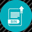 bin, extensiom, file, file format