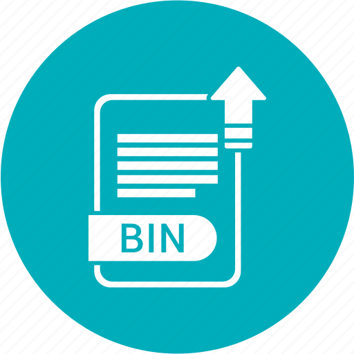 bin, extensiom, file, file format icon