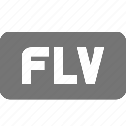 extension, flash, movie, video icon