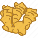 ginger, ginger root, vegetables icon icon