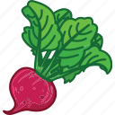 beet, beet juice, beet root, beet salad, vegetables icon icon