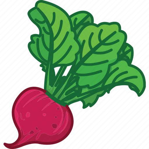 beet, beet juice, beet root, beet salad, vegetables icon icon