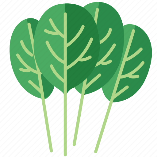 spinach, spinach salad, spinach soup, vegetables icon icon