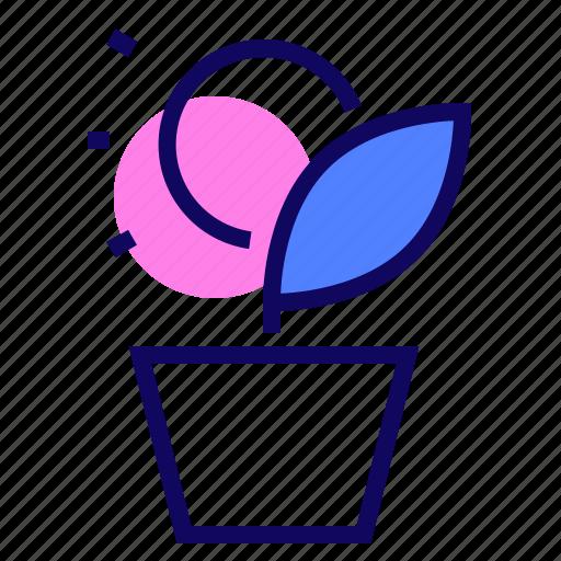 Money, plant, pot, tree icon - Download on Iconfinder