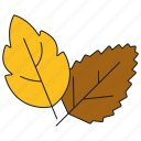 autumn, fall, foliage, garden, gardening, leaf, leaves icon