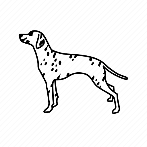 dalmation, dog, firefighters dog, mascot, pet, rescue dog, station dog icon