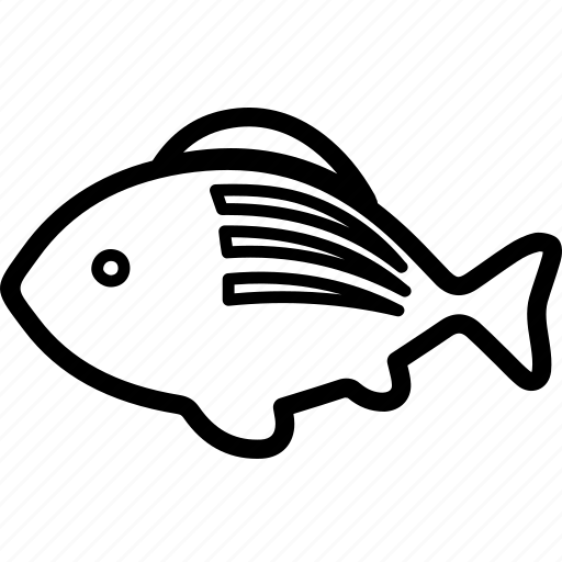 animal, fins, fish, fishing, swimming icon