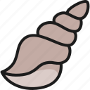 fish, food, menu, restaurant, sea, seashell, shell icon