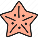 creatures, fish, food, restaurant, sea, star, starfish icon