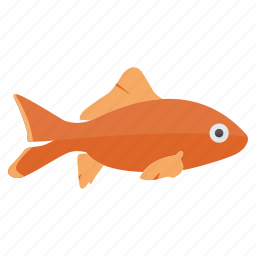 fish, fish icon, fish vector, koi, koi fish, ocean, sea, tropical fish icon