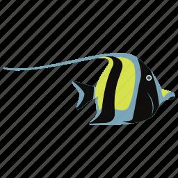 fish, fish icon, fish vector, koi, koi fish, ocean, sea, tropical fish icon