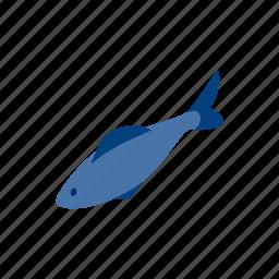 blog, fish, food, herring, isometric, ocean, sea icon
