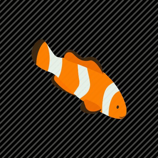 animal, blog, clown, fish, isometric, orange, sea icon