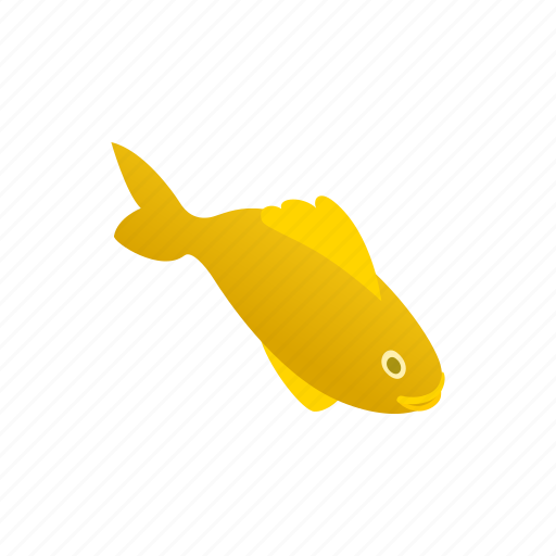 animal, blog, fish, isometric, marine, tropical, water icon