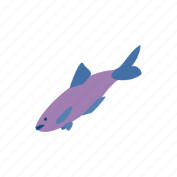 animal, blog, fish, fishing, food, isometric, salmon icon