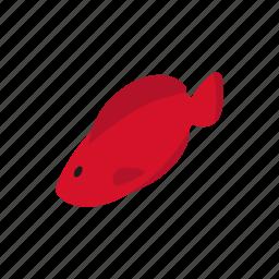 blog, fish, fishing, hemichromis, isometric, trout, water icon