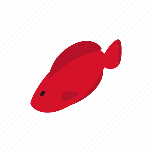 blog, fish, fishing, hemichromis, isometric, trout, water icon