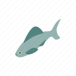 blog, fish, isometric, ocean, sea, shark, water icon